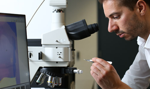 A man at a microscope